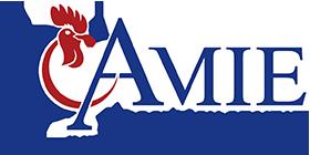 Amiesa  Blog